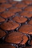 Brownie closeup Stock Images