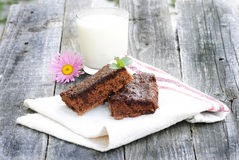 Brownie with cocoa Royalty Free Stock Photos