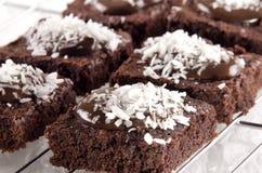 Brownie com os flocos do chocolate e do coco imagens de stock royalty free