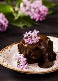 Brownie con il ribes nero Immagini Stock Libere da Diritti