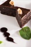 Brownie con la salsa di cioccolato Fotografia Stock