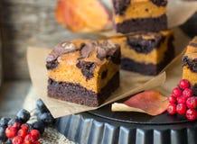 Brownie con la zucca Immagini Stock Libere da Diritti