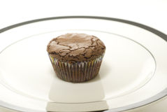 A brownie cupcake Stock Photos