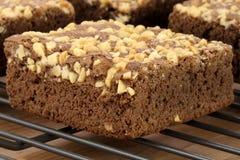 'brownie' de chocolat avec les arachides criquées sur le dessus Image stock