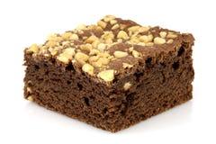 'brownie' de chocolat avec les arachides criquées sur le dessus Photographie stock