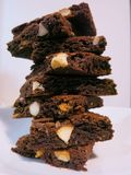 'brownie' de fondant de chocolat de macadamia Photo stock