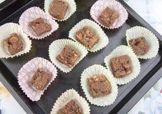 Brownie del chocolate en casos en una bandeja de la hornada Foto de archivo libre de regalías