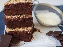 Brownie del cioccolato con la noce di cocco Immagine Stock Libera da Diritti