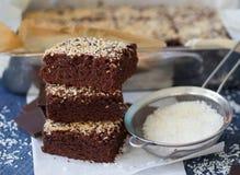 Brownie del cioccolato con la noce di cocco Fotografia Stock Libera da Diritti