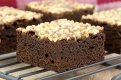 Brownie del cioccolato con le arachidi incrinate sulla parte superiore Fotografie Stock Libere da Diritti