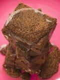 Brownie del dulce de azúcar de chocolate con la salsa de dulce de azúcar de chocolate Foto de archivo libre de regalías