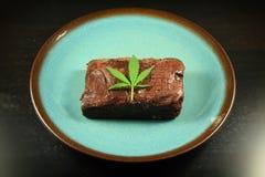 Brownie 1 del pote Imágenes de archivo libres de regalías