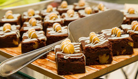 Brownie dessert on a tray Stock Image