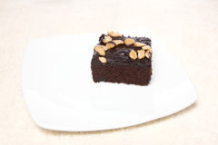 Brownie on dish and carpet isolated on white background Royalty Free Stock Photos