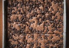 'brownie' doux avec des puces de chocolat de plat Photographie stock libre de droits