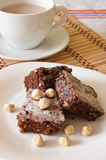A brownie e as avelã deliciosas do chocolate com cacau ordenham Fotografia de Stock