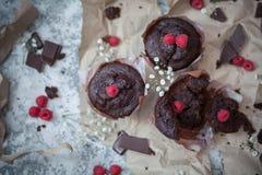 'brownie' et framboise de chocolat Photos libres de droits