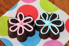 Brownie Flowers Stockfotos