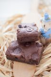 Brownie hechos en casa del dulce de azúcar cauchutoso Fotografía de archivo