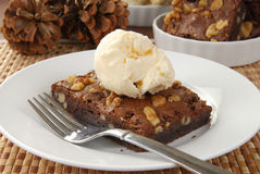 Brownie and ice cream Stock Images