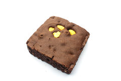 Brownie. An isolated Brownie on white background Stock Image