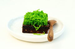 Brownie met groene eidraden wordt bedekt op witte achtergrond die royalty-vrije stock foto