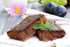 Brownie with mint Royalty Free Stock Photos
