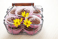 Brownie muffins Stock Photography