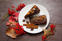 Brownie and nuts Stock Photography