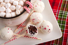 Brownie Peppermint Cake Pops Stock Photography