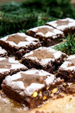 Brownie with pine nuts and pistachios with powdered sugar Royalty Free Stock Photos