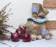 Brownie russo della bambola Fotografia Stock
