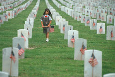 Brownie Scout putting flags at cemetery. Brownie putting up flags, Veteran's National Cemetery, Los Angeles, California Stock Photography