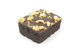 Brownie on white background Royalty Free Stock Photography