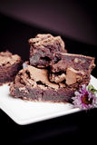 Brownies! Royalty Free Stock Photography