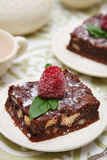 Brownies Imagem de Stock Royalty Free