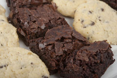 Brownies and Cookies Stock Images