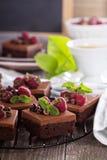 Brownies da musse de chocolate com framboesa Imagens de Stock