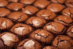 Brownies in de oven Stock Foto