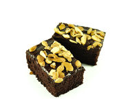 Brownies isolated on the white background Stock Photography