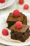 Brownies with raspberries Stock Image