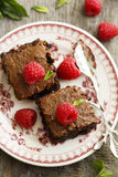 Brownies with raspberry. Homemade brownies with fresh raspberry Stock Photography