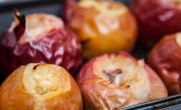 Brownish apples. Closeup shot, macro Royalty Free Stock Photography