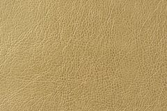 Brownish Green Artificial Leather Background Texture. A macro shot of brownish green artificial leather background texture Stock Photo