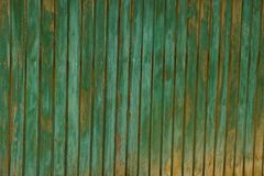 Brownish green wooden texture of wide raw boards. Colored texture of old wooden boards Royalty Free Stock Photography