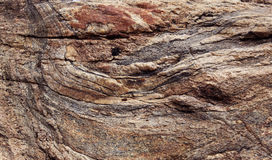 Brownish rock texture. Rock texture close up natural background photo Stock Images