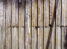 Brownish wood, pattern and background Royalty Free Stock Photography