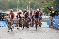 Brownlee bracia i inny, cykl, przemiana Zdjęcia Royalty Free