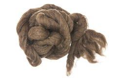 Brownpiece del primo piano merino della razza della lana australiana delle pecore su un fondo bianco Fotografia Stock Libera da Diritti