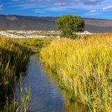 A creek flows through wetland plants and mountains in Browns Park NWR in Colorado. A creek flows through wetland plants in autumn color and distant mountains in royalty free stock photography